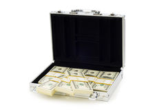 Money in the case isolated Royalty Free Stock Photos