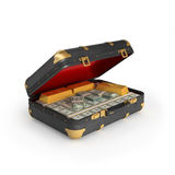Money in case Royalty Free Stock Image