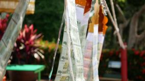 Money / cash flags swaying in a wind at a Buddhist temple in Thailand - a way of making merit / contributing / offering.  stock video footage