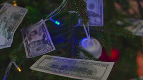Money for christmas. Cash under the tree stock footage