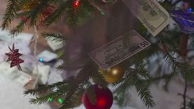 Money for christmas. Cash under the tree stock video