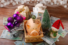 Money for christmas shopping Royalty Free Stock Photography