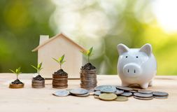 Free Money Coin Stack Growing Graph For The Real Estate Business. Plant Growing In Savings Coins With Piggy. Royalty Free Stock Photography - 159213647