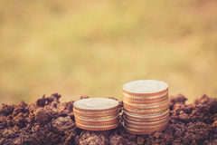 Money coin stack growing on ground with blurred background. Stock Image