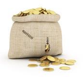 Money coins in open bag Royalty Free Stock Photos