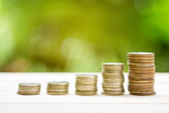 Money coins stack growing graph with sunlight nature background. Royalty Free Stock Photography