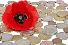 Money concept. Red wild poppy flower with euro coins Stock Photography