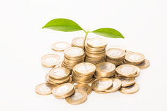 Money concept. Stock Images