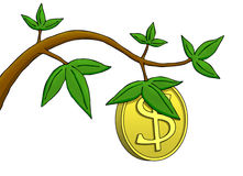 Money Does Grow on Trees!. Illustration where a dollar coin growing as a fruit on a tree Stock Images