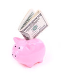 Money dollar bills and piggy bank Royalty Free Stock Photo