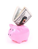 Money dollar bills, piggy bank and car toy. Isolated on white Stock Photos