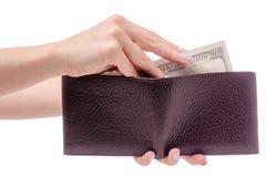 Money dollar purse in hand. On white background isolation Stock Image