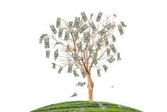 The money. Stock Images