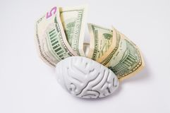 Money dollars are between the hemispheres of the human brain. Concept photo, symbolizing high pay of mental work, the high cost Stock Photos