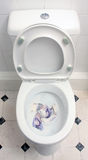 Money down the pan. Flushing money down the toilet show the full wc Royalty Free Stock Images