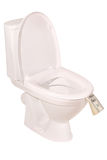 Money down the toilet bowl (Clipping path). Money down the toilet bowl on white. Clipping path included Royalty Free Stock Images