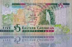 Money from Eastern Caribbean Royalty Free Stock Photos