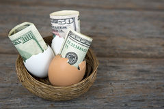 Money in egg shell in nest Royalty Free Stock Image