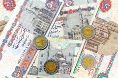 Money from Egypt, pound banknotes and coins Royalty Free Stock Image
