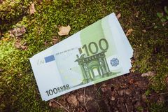 Money euro. In the forest royalty free stock photo