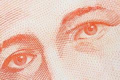 Money Eyes Royalty Free Stock Photography