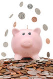 Money falling over a piggy bank Stock Images