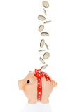 Money falling into piggy bank Royalty Free Stock Image
