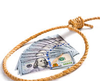 Money fan in a noose Royalty Free Stock Photo