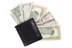 Money fan in the wallet Stock Images