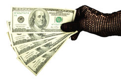 Money in a female hand in glove Royalty Free Stock Photo