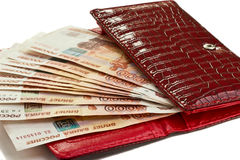 Money in female purse Stock Photography