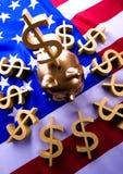 Money on the flag Royalty Free Stock Photos