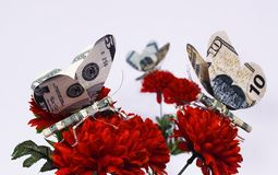 Money Flies Royalty Free Stock Photos