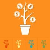 Money Flower Stock Photos