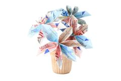 Money flower in a pot Royalty Free Stock Images