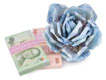 Money flower on white background Royalty Free Stock Photos