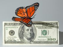 Money flying away. Butterfly and $100 bill stock image