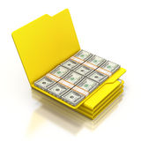 Money in the folder. 3D illustration over reflective white background Royalty Free Stock Photos