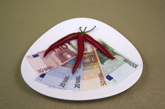 Money and the food on the plate, image 16. A series of photos. Money and the food on the plate stock photography