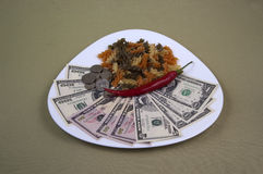 Money and the food on the plate, image 15. A series of photos. Money and the food on the plate royalty free stock photo
