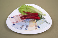 Money and the food on the plate, image 9. A series of photos. Money and the food on the plate stock photography