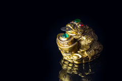 Money Frog with the coin symbolizing wealth and prosperity. Close-up Chinese Money Frog with the coin symbolizing wealth and prosperity on black background with royalty free stock images