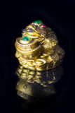 Money Frog with the coin symbolizing wealth and prosperity. Close-up Chinese Money Frog with the coin symbolizing wealth and prosperity on black background with stock images