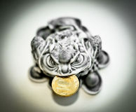 Money Frog with coin. Little chinese statuette with yellow coin  bearing success and prosperity Royalty Free Stock Photography