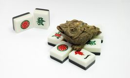 Money frog and mahjong. On the white background royalty free stock image