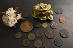 Money frog with old coins. royalty free stock image