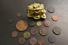 Money frog with old coins. stock photography