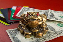 Money frog and two dollars. Stock Photography