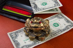Money frog and two dollars. Stock Photos