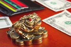 Money frog and two dollars. Stock Photo